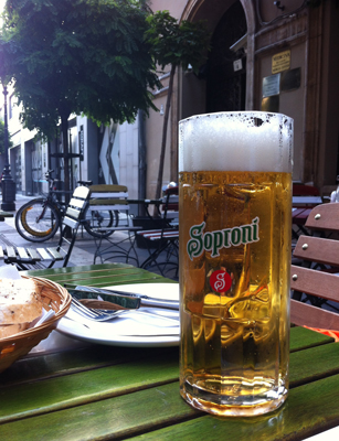 Farewell stein of Soproni beer